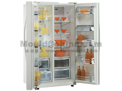 Moule de réfrigérateur 11